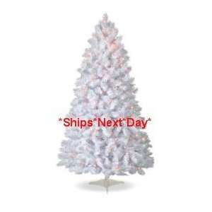 Pre lit Multi Color White Colorado Pine Christmas Tree