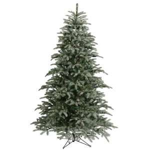 58 Frasier Fir Christmas Tree 750 Dura Lit Frosted Clear