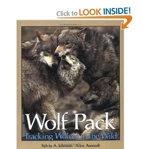 Wolf Pack Tracking Wolves in the Wild (Discovery