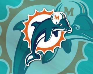 Miami Dolphins edible cake image topper  1/4 sheet